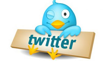 Optimize your Twitter bio for branding and SEO results