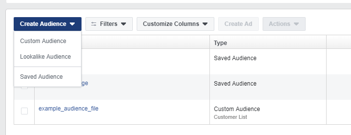 The create an audience button is on the left corner of the page. You have an option for a custom or a Facebook lookalike audience.