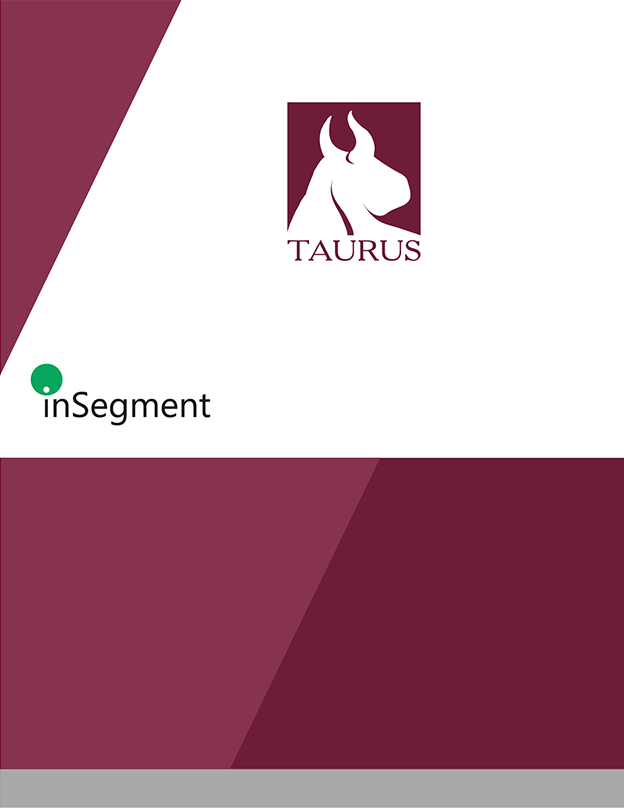 Taurus Investment Holdings